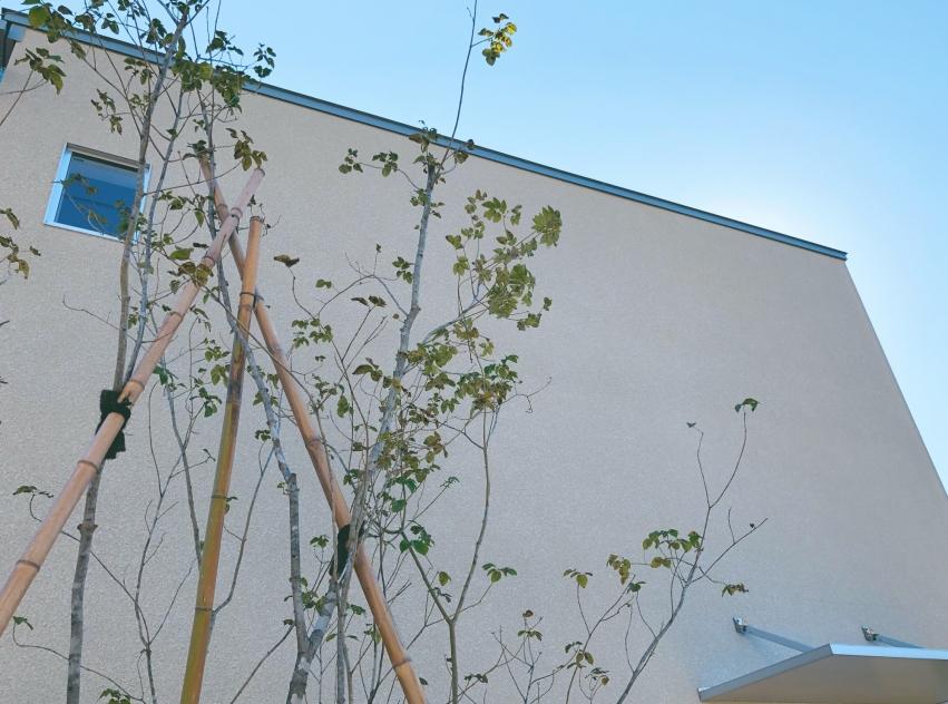 atelier MiKi | アトリエミキ建築設計事務所